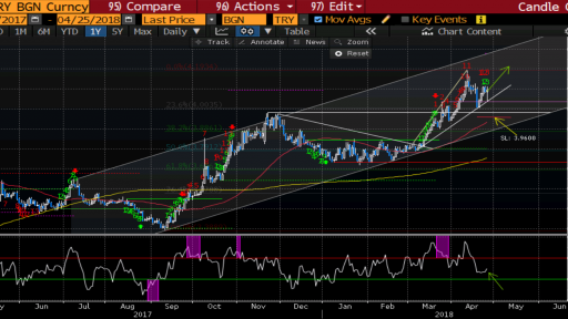 Varchev Finance - USD/TRY Daily expectations